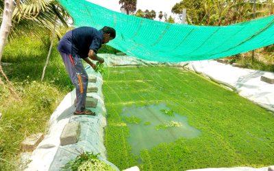 biologisch boeren en lief en leed medewerkers